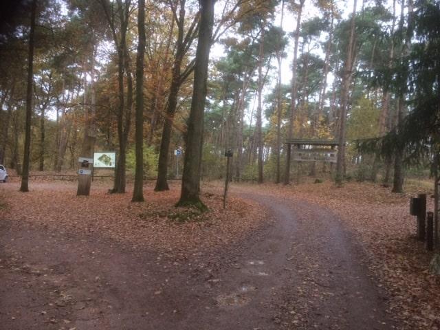 Anfahrt zum Parkplatz Venlo