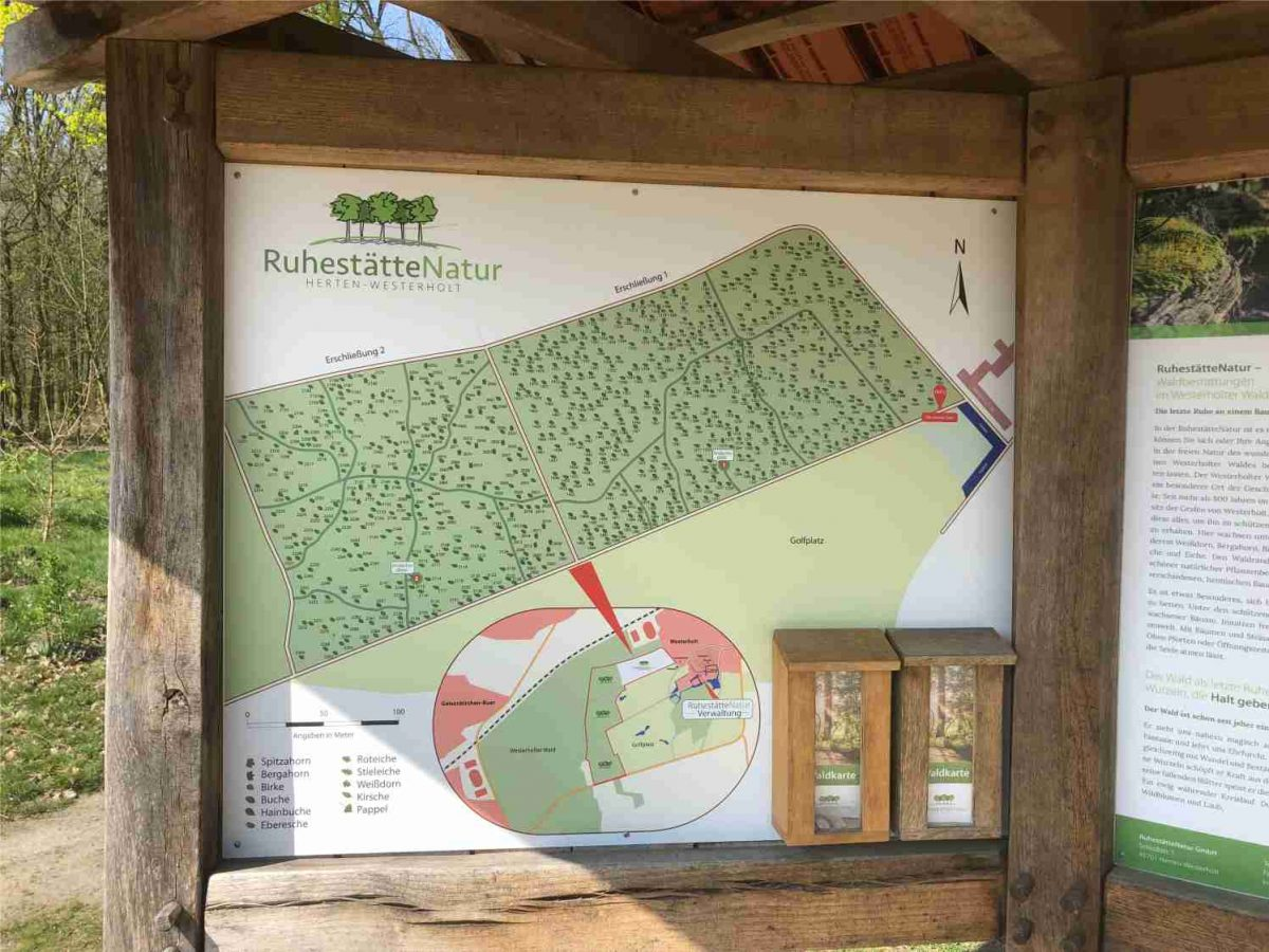 Waldbestattung in Herten-Westerholt bei Feuerbestattungen24.de