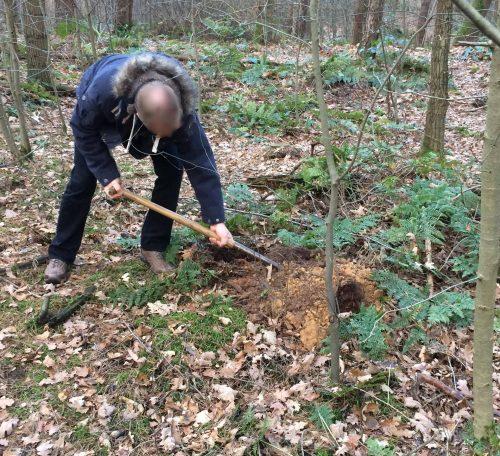 Venlo Baumbestattung Waldbestattung Venlo